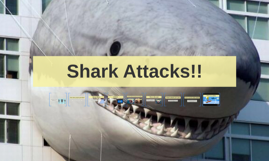 Shark Attacks!!