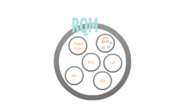 RQM 101
