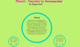 Plants!  - Vascular vs. Non- Vascular