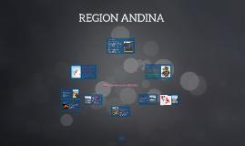 REGION ANDINA