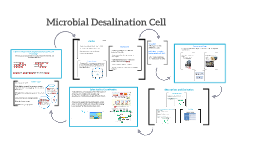 Copy of Microbial Fuel Desalination Cell