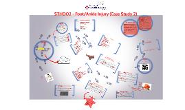 STHD02 - Case Study Seminar