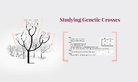 Copy of SBI3U - Analyzing Genetic Crosses: Punnet Squares