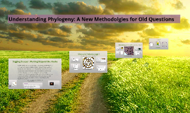 Angiosperm Diversification: A New Approach