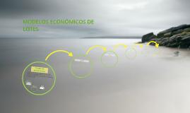 MODELOS ECONOMICOS DE LOTES