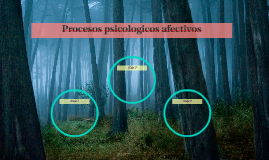 Procesos psicologicos afectivos