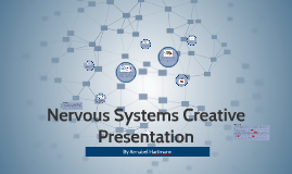 Nervous Systems Creative Presentation