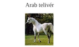 arab telivér