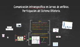 Comunicación intraespecífica en larvas de anfibios. Particip