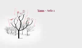 Yams - Aula 2