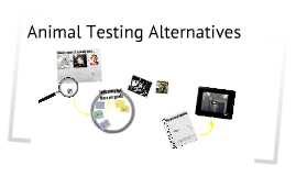 animal testing alternatives Alternatives to animal testing are the development and implementation of test methods that avoid the use of live animals there is widespread agreement that a reduction in the number of animals used and the refinement of testing to reduce suffering should be important goals for the industries involved.