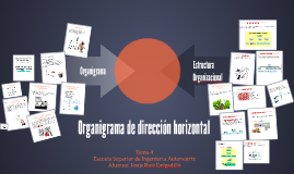 Organigrama de dirección horizontal