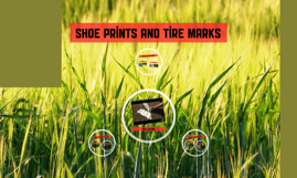 Shoe prints and tire marks