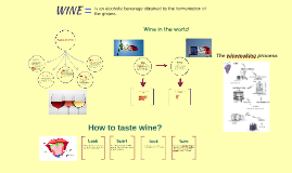 Copy of Types of Wine