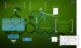 Copy of Quimica Organica