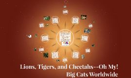 Lions, Tigers, and Cheetahs--Oh My!