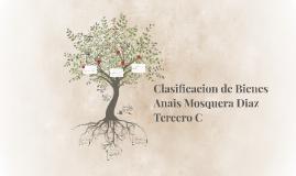 Copy of Clasificacion de Bienes