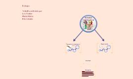 Copy of Métodos contraceptivos