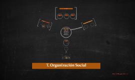 T. Organización Social