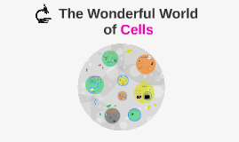 The Wonderful World of Cells