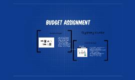 Realistic Budget