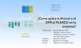 ¿Como aplica la Mutual y el DPR el PLANESI en la empresa?