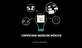 Copy of Organizacion, Finanzas, Plan de Trabajo y Resumen Ejecutivo