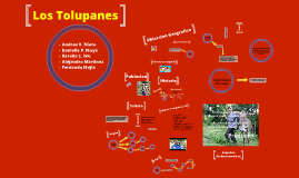 Copy of Los Tolupanes