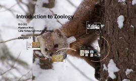 Abridged Introduction to Zoology