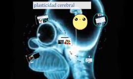 Copy of plasticidad cerebral