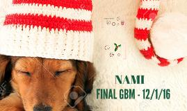 Last Nami GBM 12/1/16