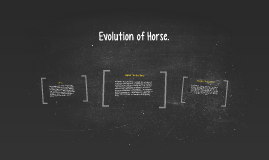 Copy of Evolution of Horse.