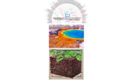 Metagenómica de suelos: grandes desafíos y nuevas oportunida