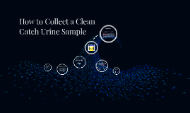 How to Collect a Clean Catch Urine Sample