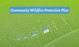 Community Wildfire Protection Plan