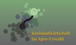 Kreislaufwirtschaft im Agro-Urwald