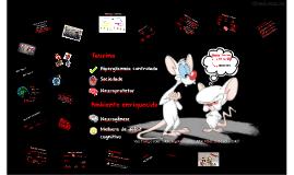 Efeito da taurina no hipocampo de ratos diabéticos