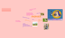 animals Nancy 4B