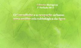 O Cercadinho e a ocupação urbana: uma análise microbiológica
