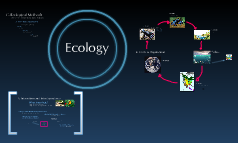 Copy of Intro to Ecology
