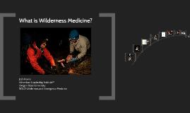 Wild Med 5-14-15
