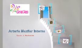 Arteria Maxilar Interna