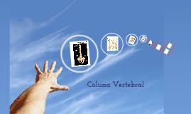 Continuação Coluna Vertebral