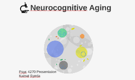 Neurocognitive Aging