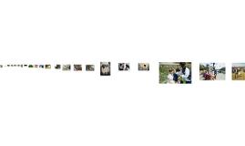 Copy of 자급을 위한 배움과 일_김다솜