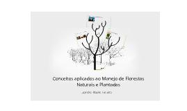 Copy of Conceitos aplicados ao Manejo Florestal