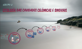 Copy of CX CAV CELÓMICAS E SINOVIAIS CON INFO