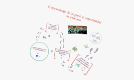 El aprendizaje de lenguas de especialidad en e-tándem