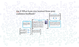 Qu 3: What have you learned from your audience feedback?