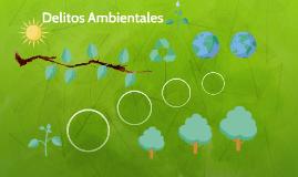 Copy of Delitos Ambientales